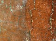 Mikroskopaufnahme einer Freilegungsprobe aus dem Hintergrund; rechte Hälfte ohne krepierte Firnisschicht, Foto: Kunsthalle Karlsruhe