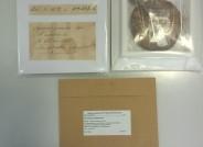 Präparierte Belege, oben Großpilze mit Vorder- und Rückseite, unten Kleinpilzbeleg in Kapsel mit neuem Etikett; © Foto: M. Scholler