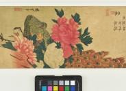 Utagawa Hiroshige, Pfingstrosen und Pfau, 1830er Jahre, Inv. V/2087, Foto: Axel Kilian, Ethnologische Sammlung Museum Natur und Mensch, Städtische Museen Freiburg.